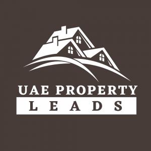 uae property (2)
